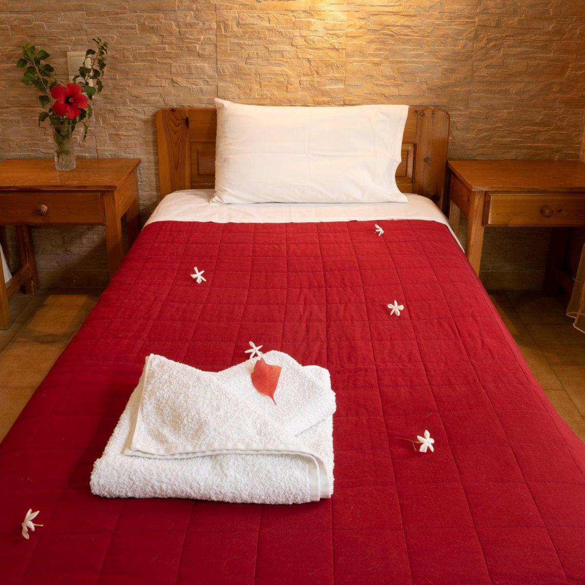 Dimitris Resort Hotel - SINGLE ROOM (BREAKFAST INCLUDED)